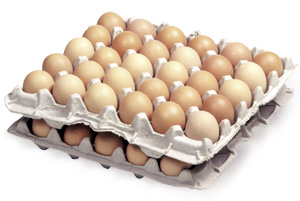 Free Range Medium Eggs x 60