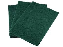 Green Scouring Pads x10