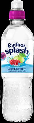Radnor Splash Still Apple & Blackcurrant 24 x 500ml