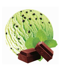 Gelato Antonio Mint Chocolate Ice Cream Chip 5ltr