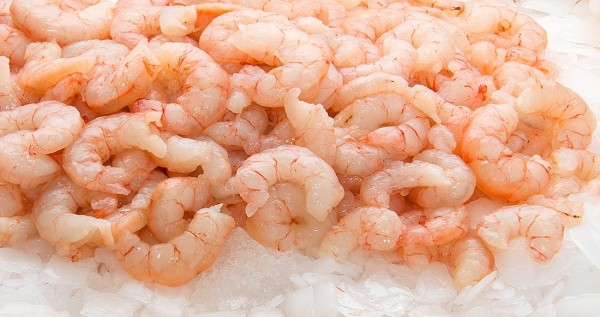 Luxury Cooked & Peeled Prawns 125/175 2kg