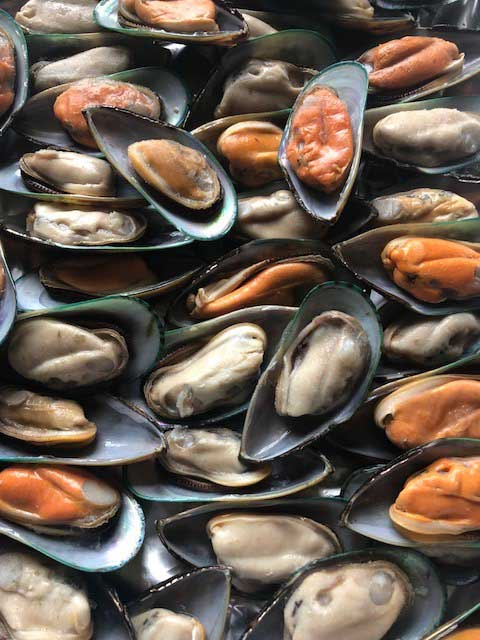 Greenshell Mussels in the half shell 1kg