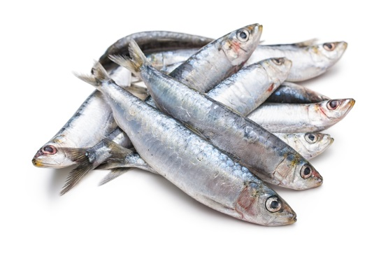 Whole Cornish Sardines 500g